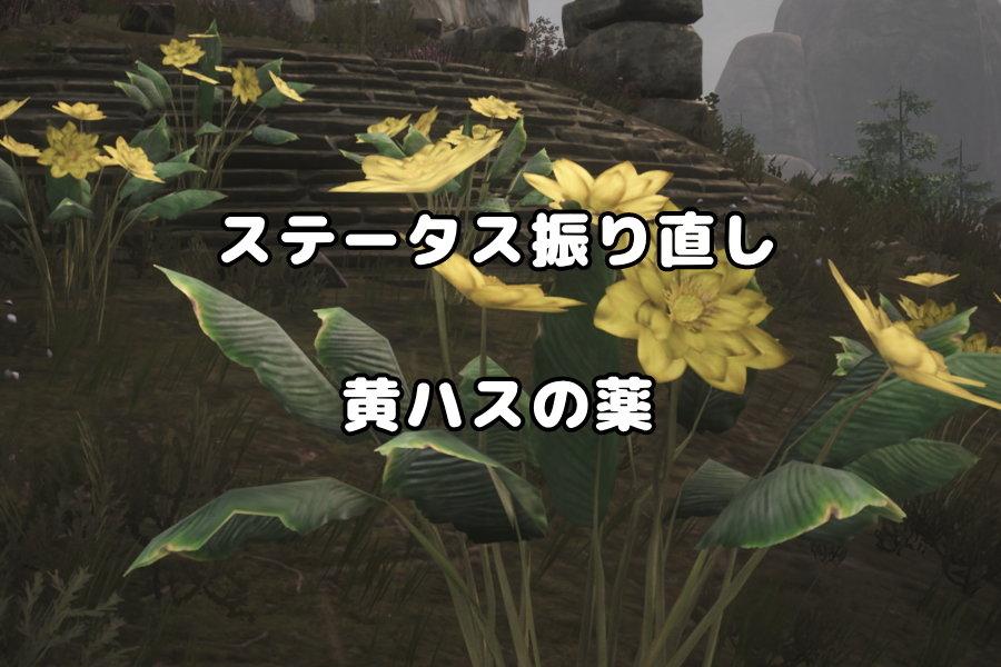 ステータスが振り直せる黄ハスの花